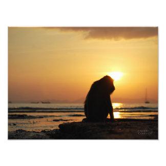 Pensive Monkey // Krabi, Thailand Photo Print