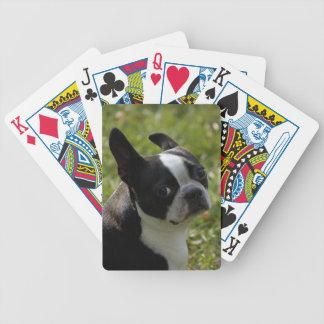 Pepsi Bicycle Playing Cards