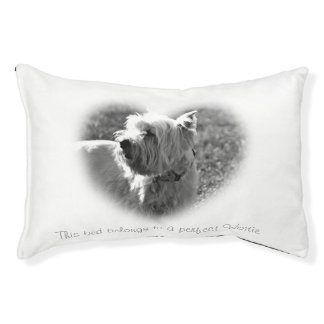 perfect Westie Terriers dog bed