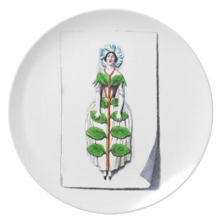 Periwinkle lady flower party plates