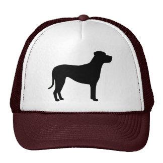 Perro De Presa Canario Hats