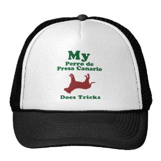 Perro de Presa Canario Mesh Hat