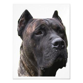 perro de pressa.png magnetic card