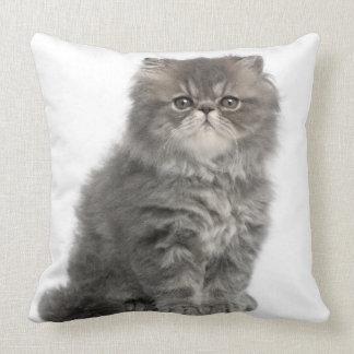Persian Kitten (2 months old) sitting Throw Pillow