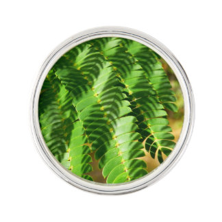 Persian Silk Tree Leaves Lapel Pin