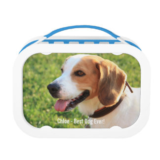 Personalized Beagle Dog Photo and Dog Name Lunch Box