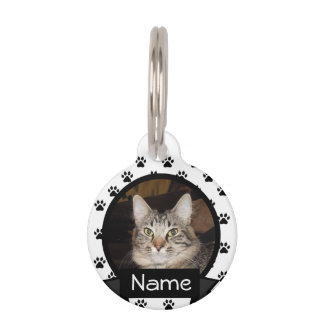 Personalized Cat I.D. Tag for Your Pet Pet Tags