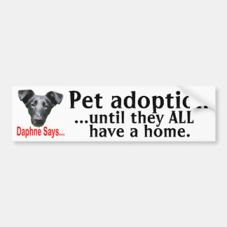 Pet adoption bumper sticker