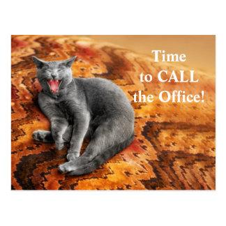 Pet Business Cat Appointment Reminder Postcard