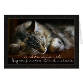 Pet Cat Sympathy Card, Loss Of Pet Card