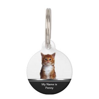 Pet Cat Tag Idenification Pet Nametags
