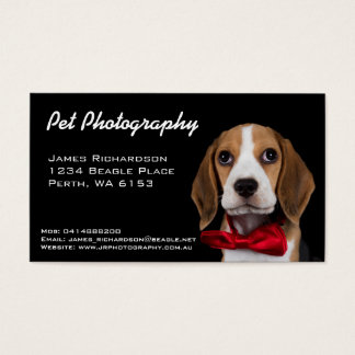 Pet photography business card