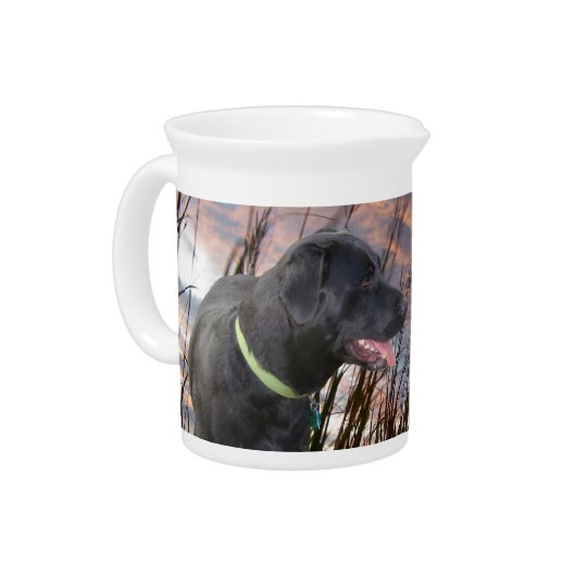 Pet Picture Pitchers! Pitchers