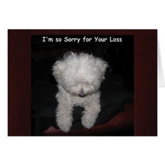 Pet Sympathy Card - Maltese Dog Praying