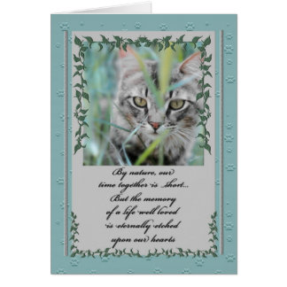 Pet Sympathy Loss of Cat | Tabby in the Grass Greeting Card