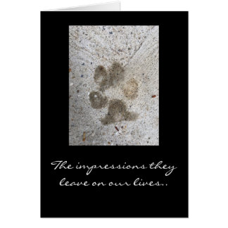 Pet Sympathy Note Card