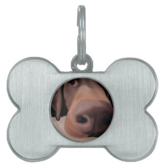 Pet Tag Dog Nose Painted Add Your Dogs Name
