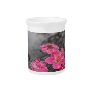 petal pink flowers water pitcher