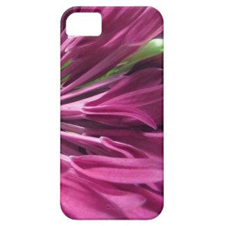 Petal Pink iPhone 5 Case