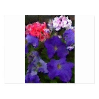 Petunias and Geraniums Postcard