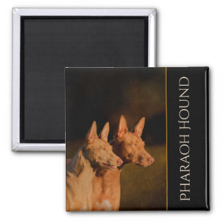 Pharaoh Hound Fridge Magnet