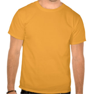 PhD In Heresy™ basic t-shirt