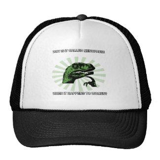 Philosoraptor Menopause Mesh Hats