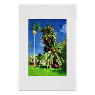 Phoenix canariensis palm tree, Oil painting Poster