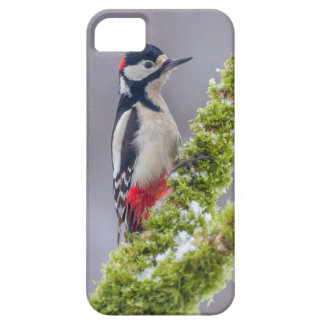 Phone case Great Spotted Woodpecker mossy branch
