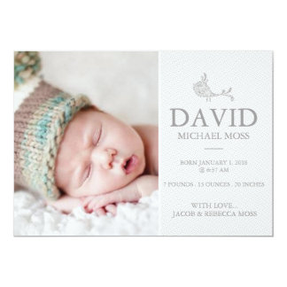 Photo Birth Announcement | Bird Announcer
