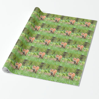 Photo of curious fox kit wrapping paper
