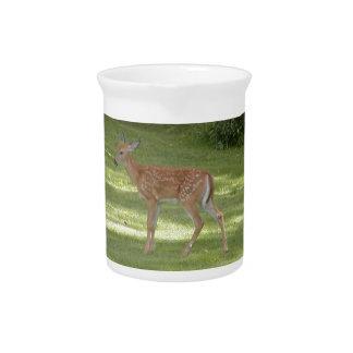 Photo of cute baby deer pitcher