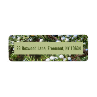 Photo of juniper bush with return address return address label