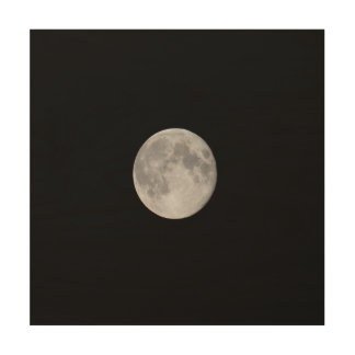 Photograph of the Moon starting from space Wood Canvas