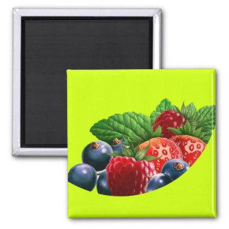 pic_06 fridge magnet