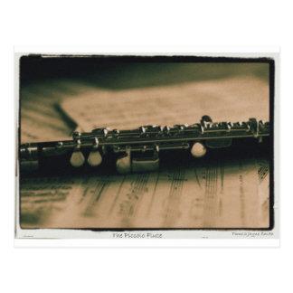 piccolo Flute 1839 Postcard