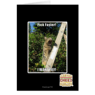 Pick Faster Greeting Cards
