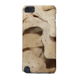 Picture of Sea Sponge. iPod Touch (5th Generation) Case