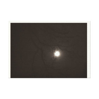 picture of the moon canvas print