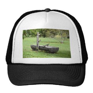 PIGEON RURAL QUEENSLAND AUSTRALIA CAP