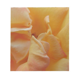 Pink and Orange Petals Memo Note Pad