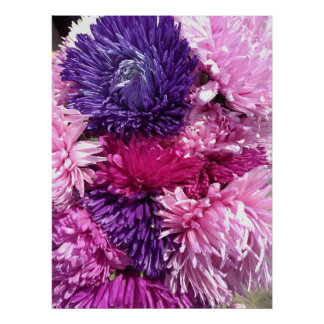 Pink And Purple Chrysanthemums Poster