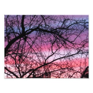 Pink And Purple Sunset Photograph