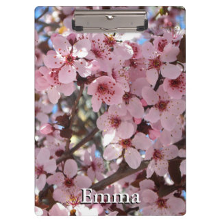 Pink Blossoms on Spring Flowering Tree Clipboard