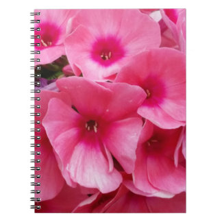 Pink Blossoms Photo Notebook (80 Pages B&W)