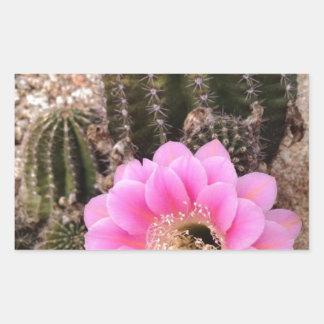 Pink Cactus Flower Rectangular Sticker