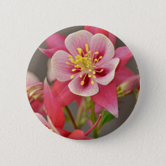 Pink columbine flower print 6 cm round badge