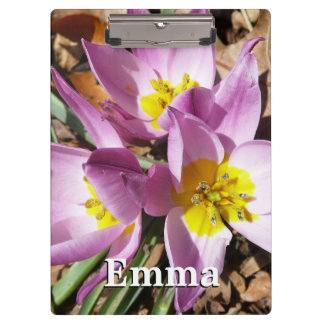 Pink Crocuses Early Spring Floral Clipboard