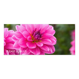 Pink Dahlia DSC4614 10 Cm X 24 Cm Invitation Card