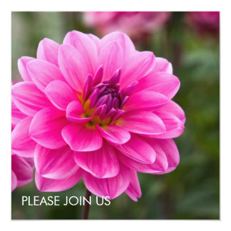 Pink Dahlia DSC4614 13 Cm X 13 Cm Square Invitation Card